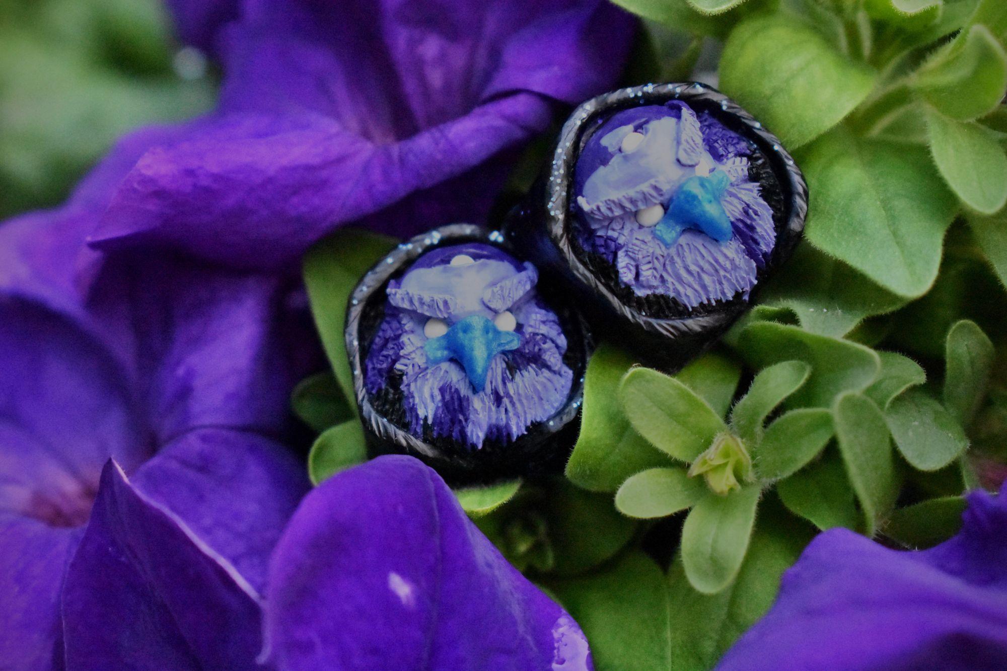 Corvus Iris